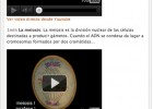 Video: Mitosis y meiosis | Recurso educativo 39764