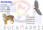 The animals activities | Recurso educativo 8940