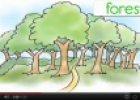Video: Nature | Recurso educativo 69906