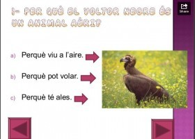 Els animals | Recurso educativo 496183