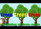 Parts of the tree: 'Head, shoulders, knees and toes' for trees! | Recurso educativo 688767
